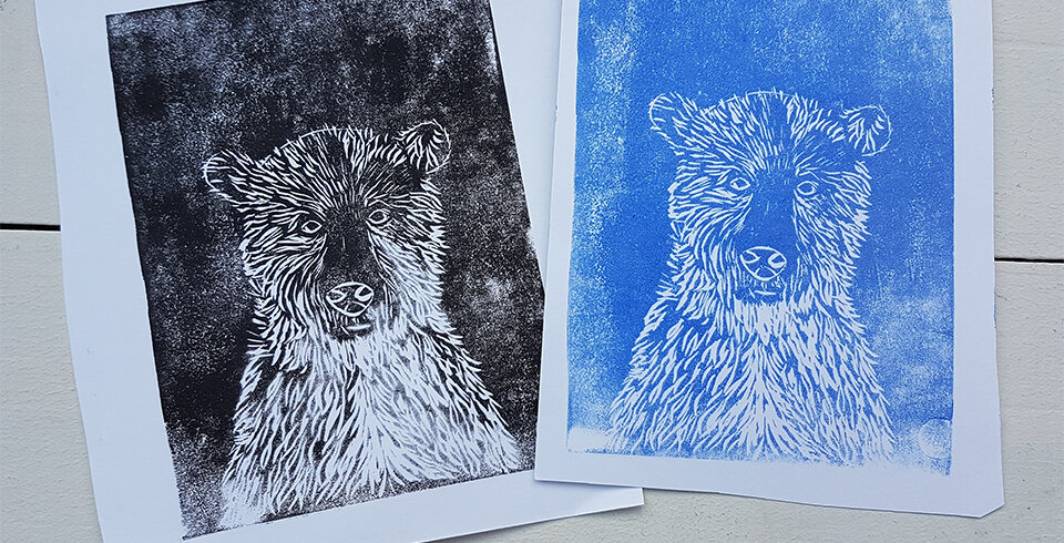 Two A4 prints of a bear - one has used black paint whilst the other has used blue.