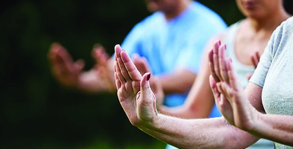 A close-up of 3 pairs of hands holding a tai chi pose with their arms stretched in front, hands upright and palms facing outwards. The first pair of hands are in focus and the other two are blurred in the background.